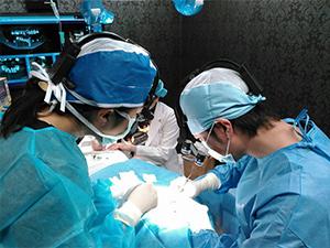高度歯科医療 / 短期治療(インプラント・口腔外科・セラミック)